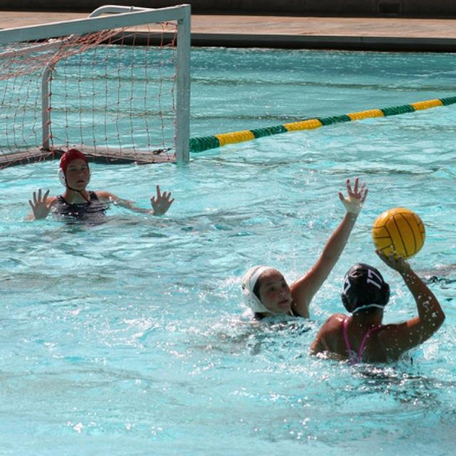 国体にトライアスロン、ビーチバレー、水球女子など導入 東京五輪を目指して