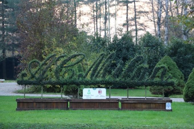 手入れされたミランロゴの園芸