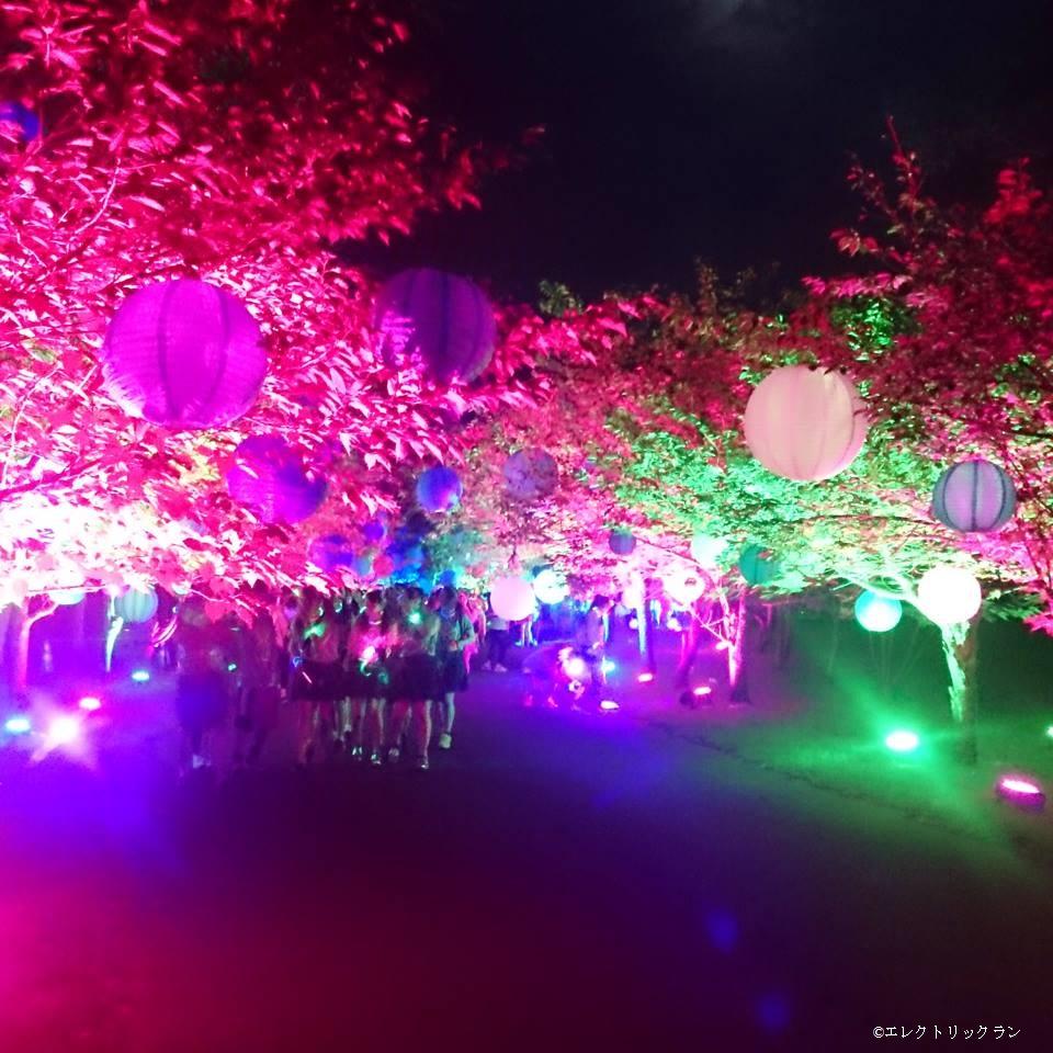 北海道初開催! 光と音のナイトランニングイベント「エレクトリックラン札幌」