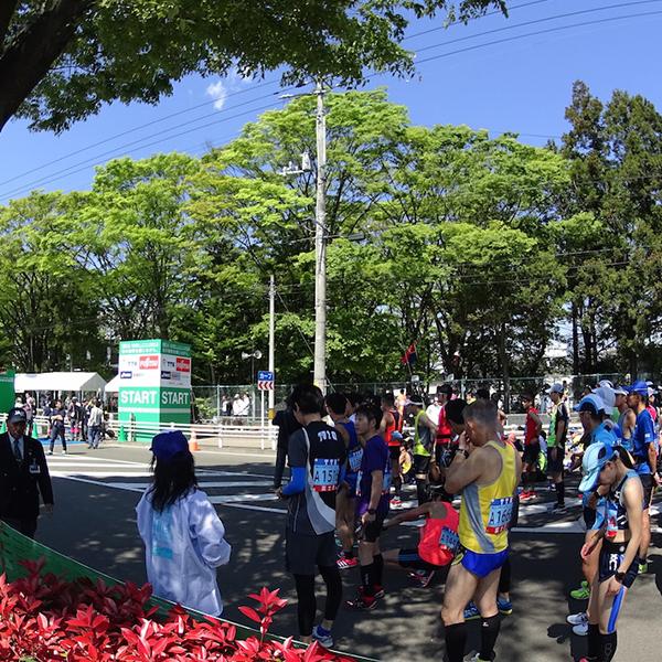 新緑に囲まれたフラットコースを駆け抜ける!「仙台国際ハーフマラソン」レポート