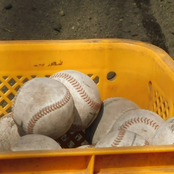 選抜高校野球、近畿地区代表校の横顔