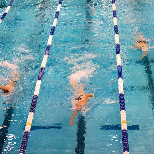 東京オリンピックで活躍しそうな競泳選手を一挙紹介!